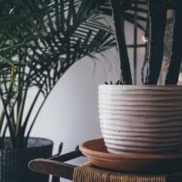 Dekorative og håndmalede unika gulvvaser til favorable priser hos NorthByNorth