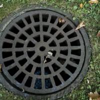 Få en professionel kloakservice til at lave miljøvenlige regnvandsløsninger i dit hjem